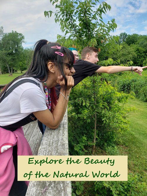 Explore the Beauty of the Natural World